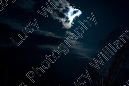 romania-8780 